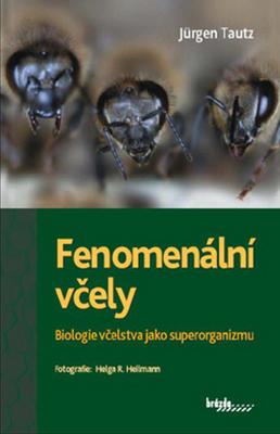 Obrázok Fenomenální včely