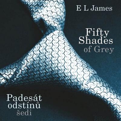 Obrázok Fifty Shades of Grey (Padesát odstínů šedi)