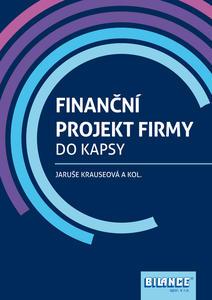 Obrázok Finanční projekt firmy