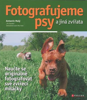 Obrázok Fotografujeme psy