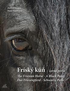 Obrázok Fríský kůň