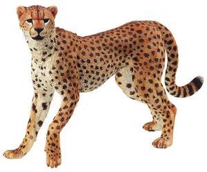 Obrázok Gepard
