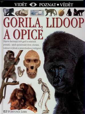 Obrázok Gorila, lidoop a opice