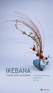 Obrázok Ikebana