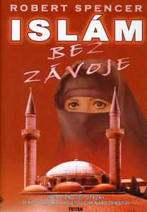 Obrázok Islám bez závoje