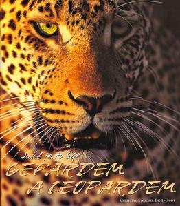 Obrázok Jaké je to být gepardem a leopardem