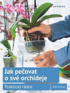 Obrázok Jak pečovat o své orchideje