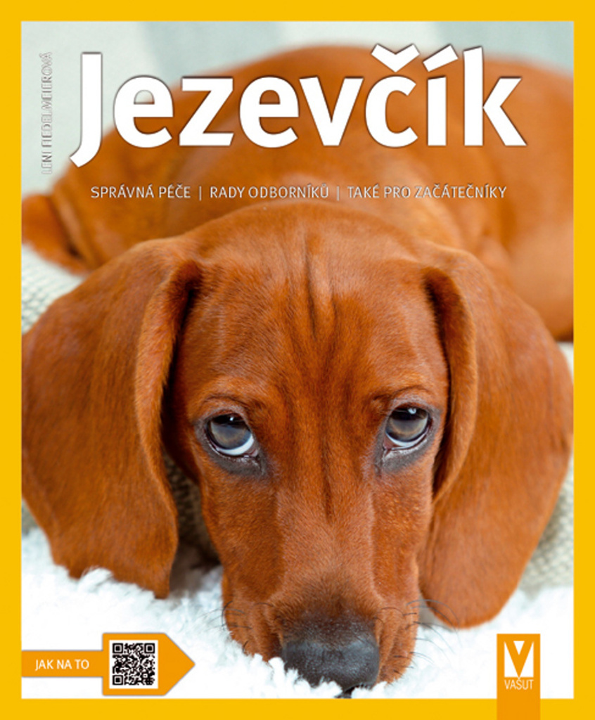 Jezevčík - Leni Fiedelmeierová