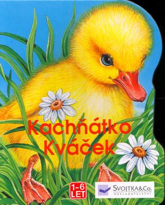 Obrázok Kachňátko Kváček