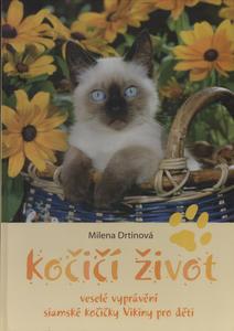 Obrázok Kočičí život