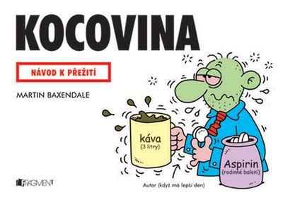 Obrázok Kocovina
