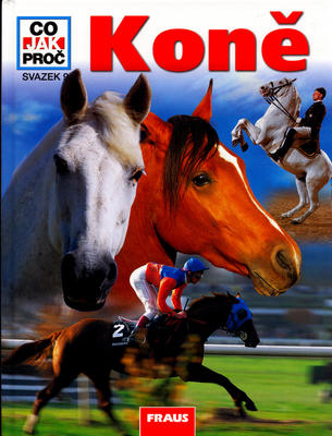 Obrázok Koně