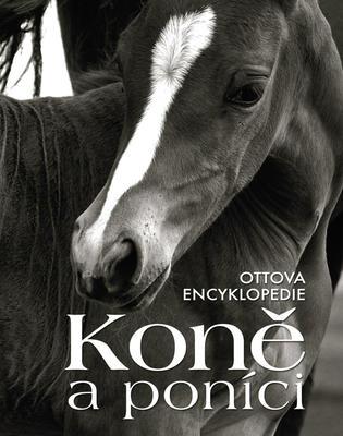 Obrázok Koně a poníci (Ottova encyklopedie)