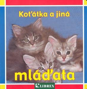 Obrázok Koťátka a jiná mláďata