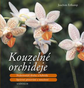 Obrázok Kouzelné orchideje