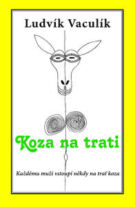 Obrázok Koza na trati