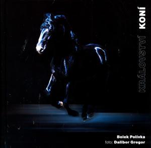 Obrázok Království koní