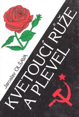 Obrázok Kvetoucí růže a plevel
