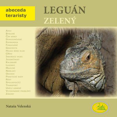 Obrázok Leguán zelený
