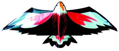 Obrázok Létající drak orel