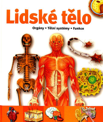 Obrázok Lidské tělo