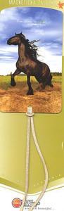 Obrázok Magnetická záložka Kůň - MZ 033