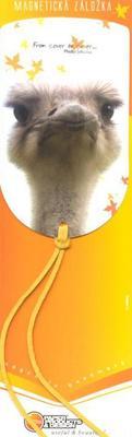 Obrázok Magnetická záložka Pštros - MZ 037
