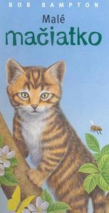Obrázok Malé mačiatko