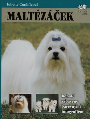 Obrázok Maltézáček