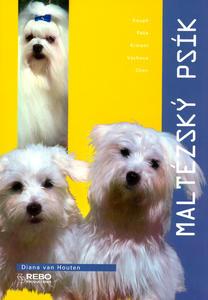Obrázok Maltézský psík