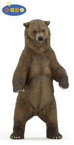 Obrázok Medvěd grizzly