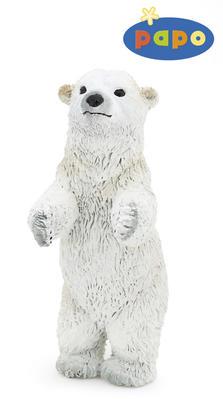 Obrázok Medvěd lední mládě stojící