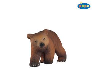 Obrázok Medvěd Pyrinejský mládě