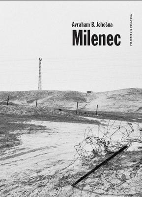 Obrázok Milenec