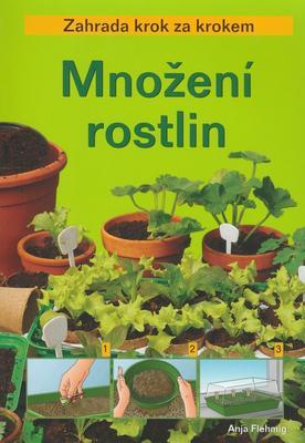 Obrázok Množení rostlin
