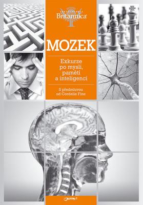 Obrázok Mozek