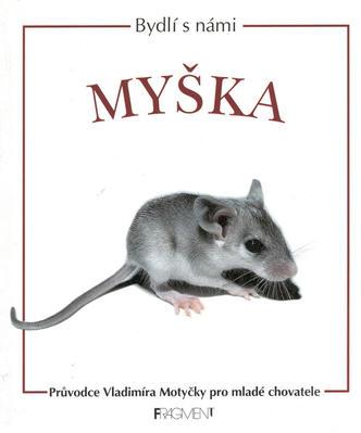 Obrázok Myška