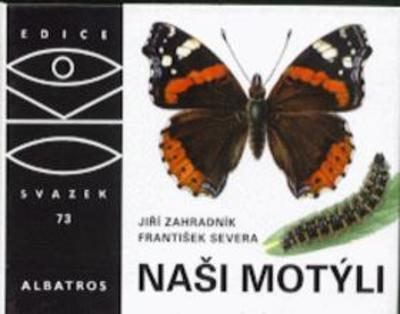 Obrázok Naši motýli
