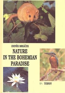 Obrázok Nature in the Bohemian paradise
