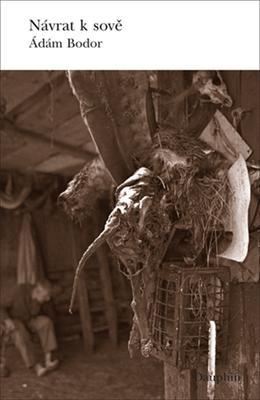 Obrázok Návrat k sově