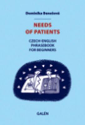 Obrázok Needs of patients