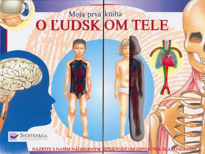 Obrázok O ľudskom tele