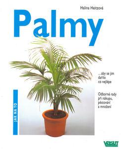 Obrázok Palmy