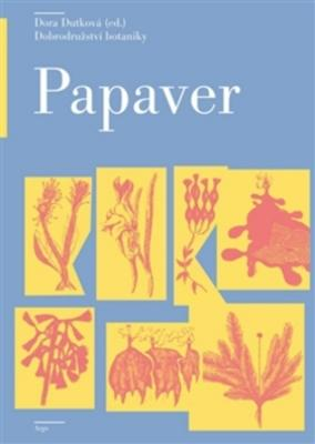 Obrázok Papaver
