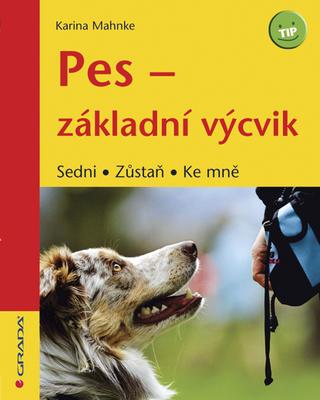 Obrázok Pes - základní výcvik