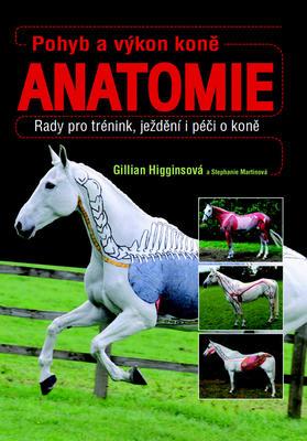 Obrázok Pohyb a výkon koně Anatomie