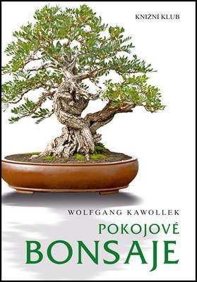 Obrázok Pokojové bonsaje