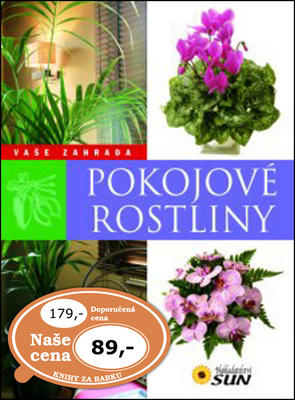 Obrázok Pokojové rostliny