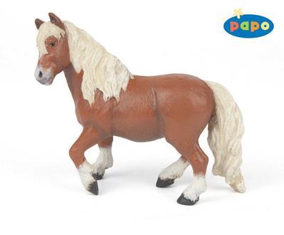 Obrázok Pony shetlandský