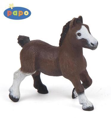 Obrázok Pony shetlandský hříbě